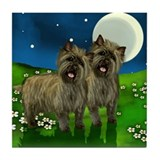 CAIRN TERRIER DOGS FULL MOON Tile Coaster