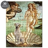 Venus - Yellow Lab #7 Puzzle