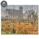 Foggy Barn Puzzle