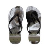 Black Squirrel Flip Flops