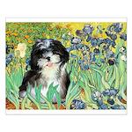 Irises / Shih Tzu #12 Small Poster