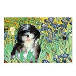 Irises / Shih Tzu #12 Postcards (Package of 8)