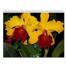 John's 2013 Orchid Calendar
