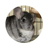 Chinchilla - Benny - Ornament (Round)