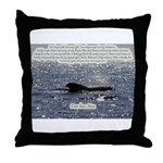 Shine Your Light Throw Pillow
