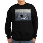 Shine Your Light Sweatshirt (dark)