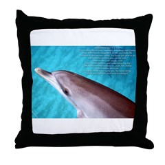Integration Throw Pillow