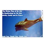 Divine Plan Postcards (Package of 8)