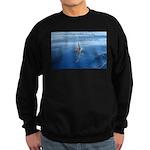 Connect With Spirit Sweatshirt (dark)