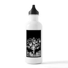 Acoustic Guitar Tree Water Bottle