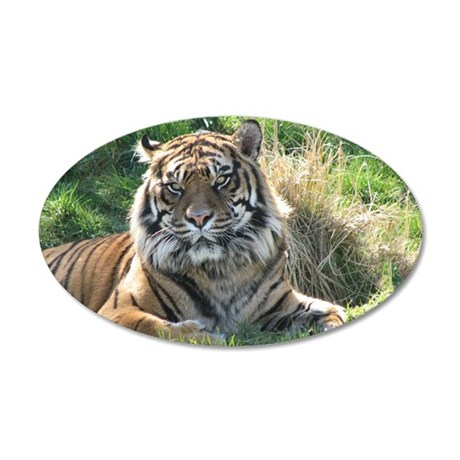 Helaine's Tiger 35x21 Oval Wall Decal