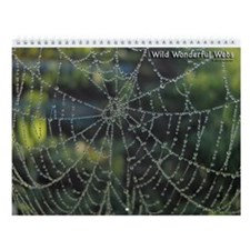 Wild Wonderful Webs Wall Calendar