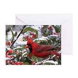 Cardinals Greeting Cards (10 Pack)