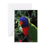 Rainbow Lorikeet Birthday Greeting Card