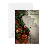 Cockatoo Christmas Greeting Cards (Pk of 10)