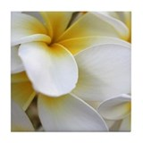 Yellow Hibiscus Hawaiian Tile Coaster