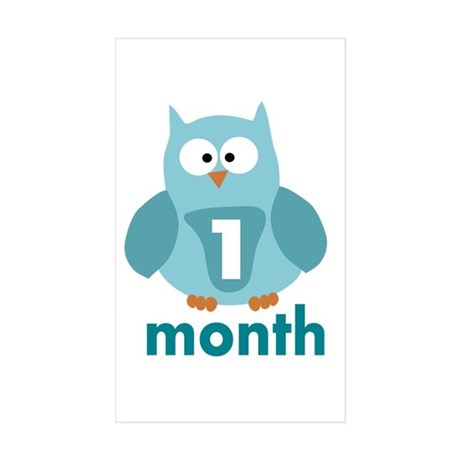 Custom Owl Age Sticker (Rectangle 50 pk)