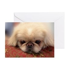 Cute White pekingese Greeting Cards (Pk of 10)