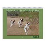 Irish Red &amp;amp; White Setter Calendar 2013