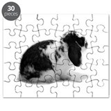 Holland Lop Rabbit - Broken B Puzzle