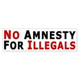 No Amnesty D24MX1 Bumper Bumper Sticker