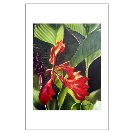 Red Canna Large Poster