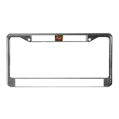 Red Canna License Plate Frame