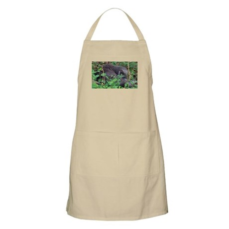 Kitten in Honeysuckle BBQ Apron