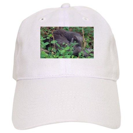Kitten in Honeysuckle Cap