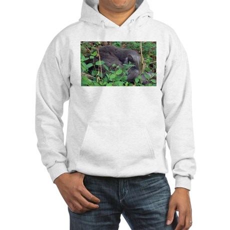 Kitten in Honeysuckle Hooded Sweatshirt