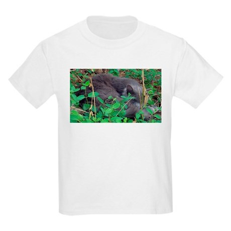 Kitten in Honeysuckle Kids Light T-Shirt