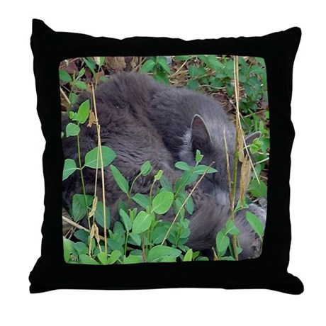 Kitten in Honeysuckle Throw Pillow