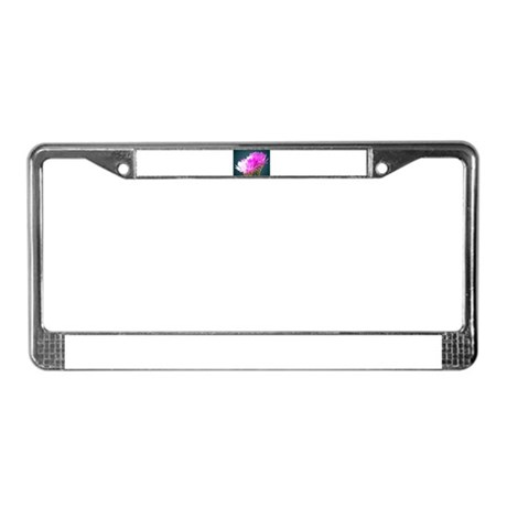 Cactus Blooms License Plate Frame