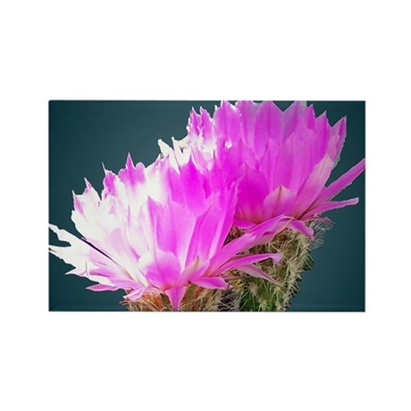 Cactus Blooms Rectangle Magnet