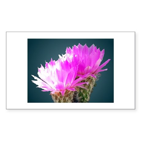 Cactus Blooms Rectangle Sticker