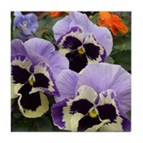 Happy Pansy Trio Tile Coaster