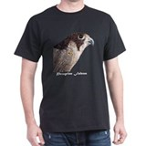 Peregrine Falcon Black T-Shirt