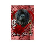 Valentines - Key to My Heart Newfie Rectangle Magn