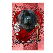 Valentines - Key to My Heart Newfie Postcards (Pac
