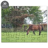 Irish National Stud Puzzle