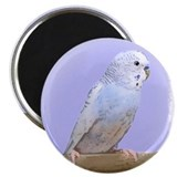 Blue Budgie Magnet