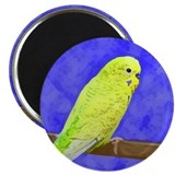 Male Yellow Budgie Magnet
