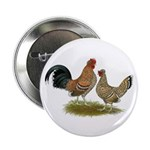 "Pyncheon Bantams 2.25"" Button"