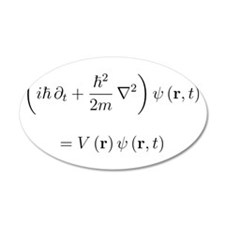 Schrodinger equation, older n 22x14 Oval Wall Peel