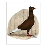 Flying Flight Red Pigeon Small Poster