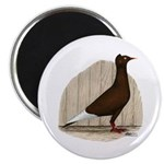 "Flying Flight Red Pigeon 2.25"" Magnet (100 pa"