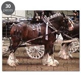Clydesdale Four-Horse Hitch Puzzle
