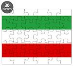 Iran Puzzle