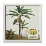 Banana Tree Tile Coaster