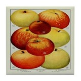 8 Apples Tile Coaster